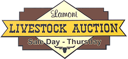 Lamoni Livestock Auction